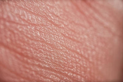Abstract Royalty-Free and Rights-Managed Images - Macro photo of human skin by Rob Downer