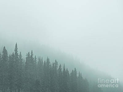 Royalty-Free and Rights-Managed Images - Mist On The Morning Hills by Evelina Kremsdorf