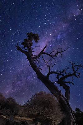 Photograph - Night scape by Manolis Tsantakis