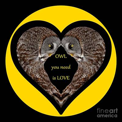Animals Digital Art - Owl you need is love by Heather King