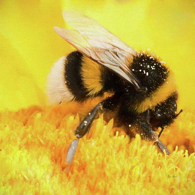 Painting - Pollen Transport by Bumblebees by Russ Harris