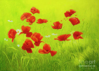 Royalty-Free and Rights-Managed Images - Poppy field by Veikko Suikkanen