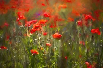 1-war Is Hell Royalty Free Images - Poppy Meadow Art Royalty-Free Image by David Pyatt