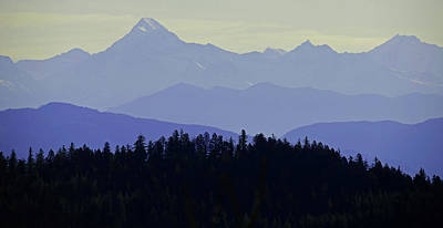 Tina Turner - Purple Mountains Majesty by Whispering Peaks Photography