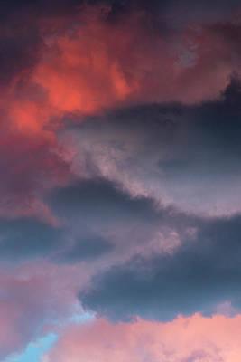 Photograph - Rebirth series by Bez Dan