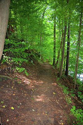 Pasta Al Dente - River Path by Linda Kerkau