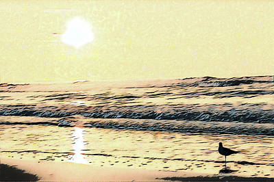 Surrealism Royalty-Free and Rights-Managed Images - Seagull at Sunrise by Surreal Jersey Shore