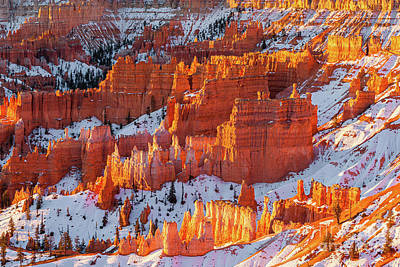 Photograph - Sunrise in Bryce Canyon National Park by Henk Meijer Photography