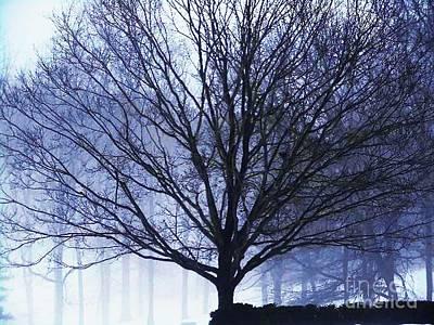 Pasta Al Dente - The Healing Tree by Deborah Morrow