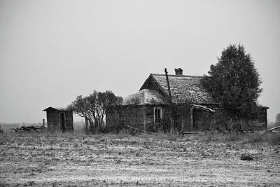 Abstract Animalia - The Homestead by Whispering Peaks Photography