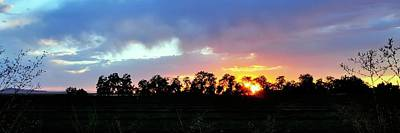Jerry Sodorff Royalty-Free and Rights-Managed Images - Tree Line Sunset Fall by Jerry Sodorff