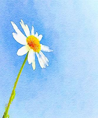 Mellow Yellow - Watercolor Daisy by Marianna Mills