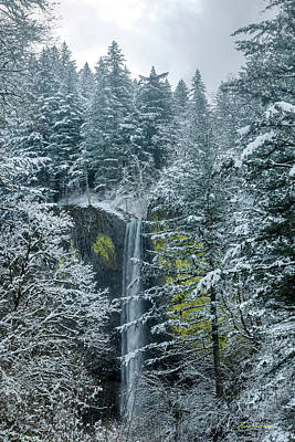 Beach House Signs - Winter at Latourell Falls by Hans Franchesco