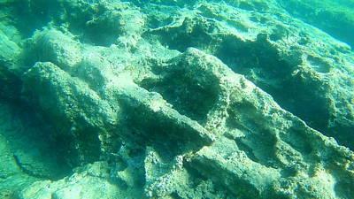 Moody Trees - Sea Turtle Caretta - Caretta Zakynthos Island Greece by GiannisXenos Underwater Photography