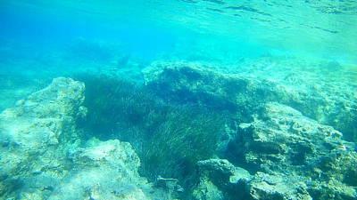 Keith Richards - Sea Turtle Caretta - Caretta Zakynthos Island Greece by GiannisXenos Underwater Photography