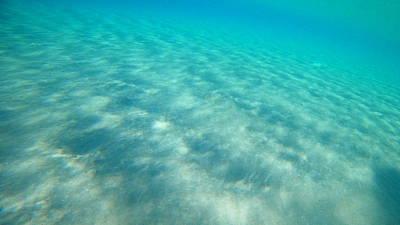 World War 2 Action Photography - Sea Turtle Caretta - Caretta Zakynthos Island Greece by GiannisXenos Underwater Photography