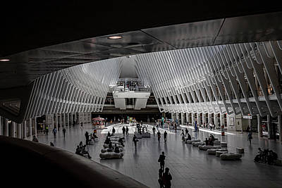 Rabbit Marcus The Great - Oculus Center NYC by Robert Ullmann