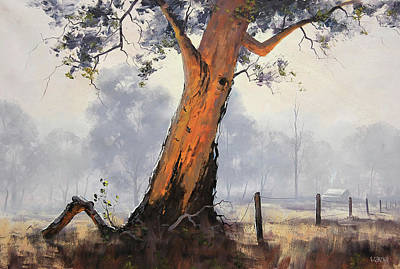 Royalty-Free and Rights-Managed Images - Australian Eucalyptus Tree by Graham Gercken