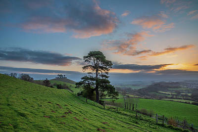 Advertising Archives - Beautiful vibrant sunrise landscape image of Colmers Hill in Do by Matthew Gibson