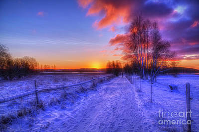 Royalty-Free and Rights-Managed Images - December morning by Veikko Suikkanen