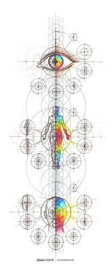Drawing - Intuitive Geometry Human Anatomy Series by Nathalie Strassburg