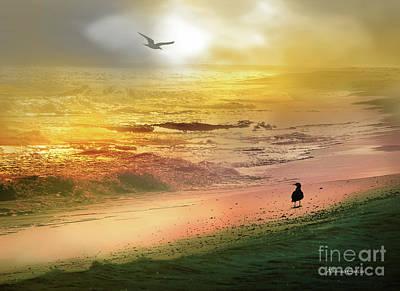 Photograph - Playa de Canela by Alfonso Garcia