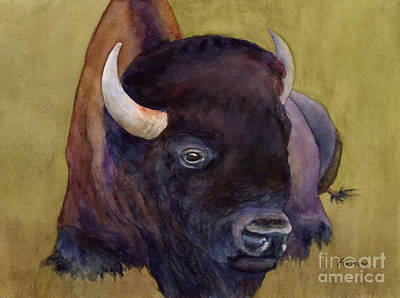 Open Impressionism California Desert - Resting Bison 2 by Hailey E Herrera
