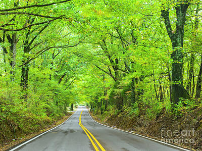 Photograph - Tennessee backroads by Ranjay Mitra