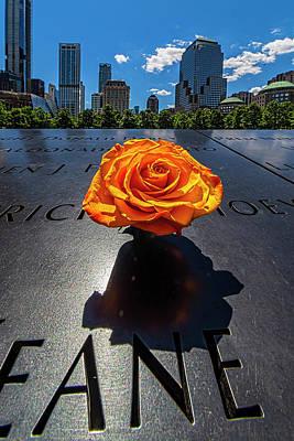 Rabbit Marcus The Great - World Trade Center Memorial - Flower by Robert Ullmann