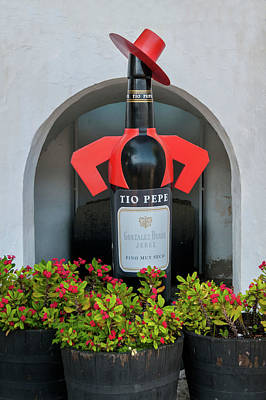 From The Kitchen - Bodega Tio Pepe by Carol Ailles