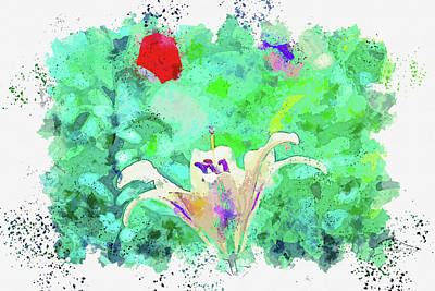 Royalty-Free and Rights-Managed Images -  watercolor, by Ahmet Asar by Celestial Images