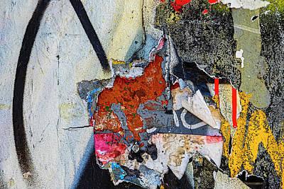 Animal Portraits - Detail of Graffitied Wall by Robert Ullmann
