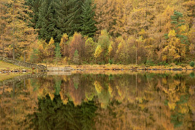 Kim Fearheiley Photography - Beautiful colorful vibrant Autumn Fall landscape image of Blea T by Matthew Gibson