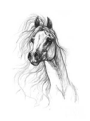 Best Sellers - Animals Drawings - Horse Head  by Angel Ciesniarska