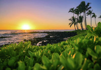 Sean Rights Managed Images - Sunset over the coast of Kauai, Hawaii Royalty-Free Image by James Byard