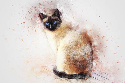 Colored Pencils - Illustration  Art  Drawing  Painting  by Artistic Panda