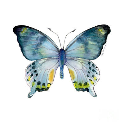 Animals Paintings - 68 Laglaizei Butterfly by Amy Kirkpatrick