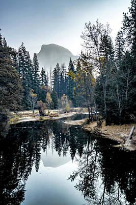 Owls - Early Morning At Yosemite National Park California by Alex Grichenko