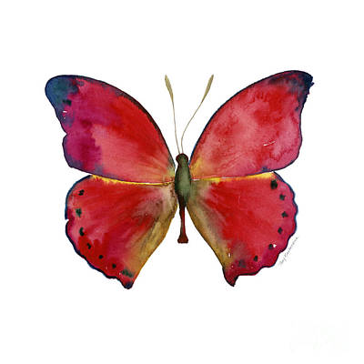 Animals Paintings - 83 Red Glider Butterfly by Amy Kirkpatrick