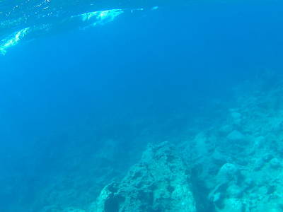 Caravaggio - GiannisXenos Underwater Photography by GiannisXenos Underwater Photography
