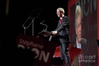 Owls - Stephane Dion by Pierre Roussel