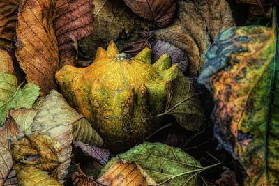 Photograph - A Cozy Autumn by Steve Sullivan