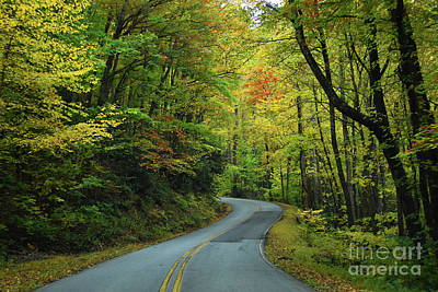Summer Trends 18 - A Fall Drive by Skip Willits