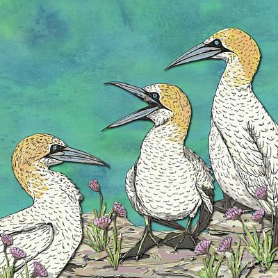 Digital Art - A Gaggle Of Gannets by Lotti Brown