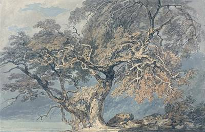 Sean Rights Managed Images - A Great Tree 1796 by J M W Turner 1775 1851 Royalty-Free Image by Arpina Shop