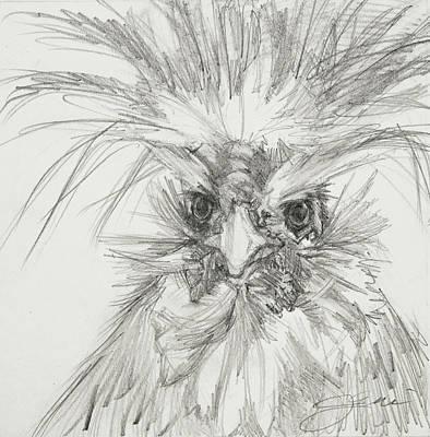 Studio Grafika Typography - A Haute Chick Named Harriet by Jani Freimann