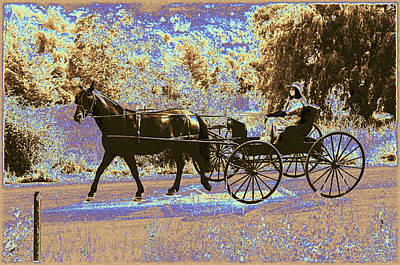 Animals Royalty-Free and Rights-Managed Images - A Horse And A Buggy In The Country by Patricia Keller