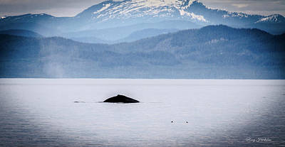 Water Droplets Sharon Johnstone - A Humpback Whale Appears by Roxy Hurtubise