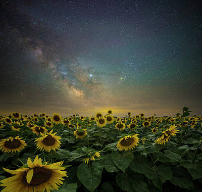 Wild Weather - A Million Suns by Aaron J Groen