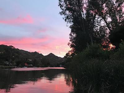 On Trend At The Pool - A Pink Sunset on the Lake by Luisa Millicent
